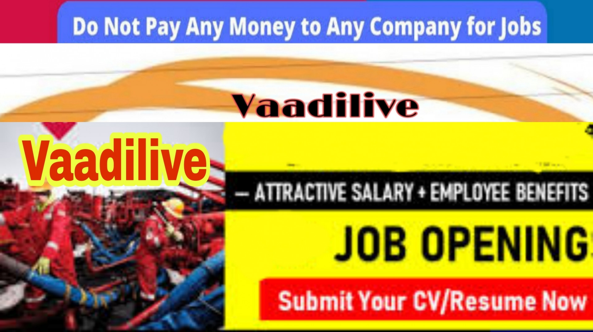 Data Entry Operator Jobs Graduate Jobs in Kashmir and Jammu Apply Now