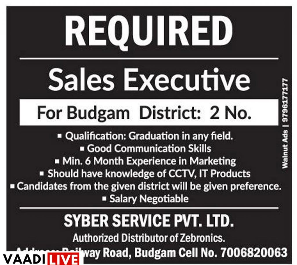 Private jobs in budgam district Sales executive jobs Dps budgam jobs Kashmir