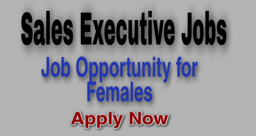 Sales Executive Jobs in Srinagar Female Hazratbal Tour and travels Vertical travels