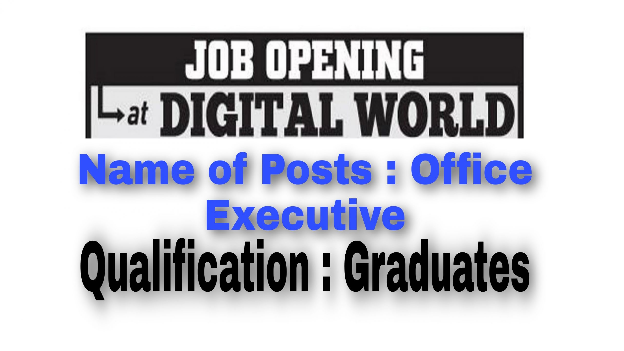 Office Executive jobs in Srinagar