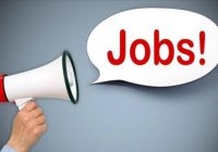 Jobs in High School 20 Plus Posts Available: Apply Now