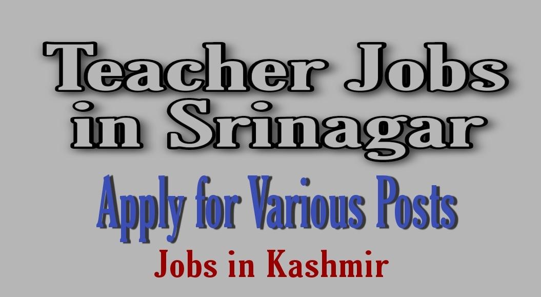 Teacher jobs in Srinagar 2021 Kashmir cambridge mission school wanabal rawalpora