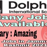 Dolphin International School Pulwama Jobs 2021 Admission Fee structure Contact number