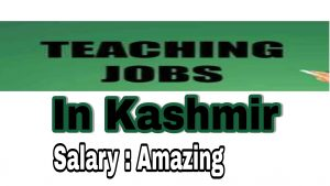 Mehjoor Educational Institute Mehjoor Nagar Jobs