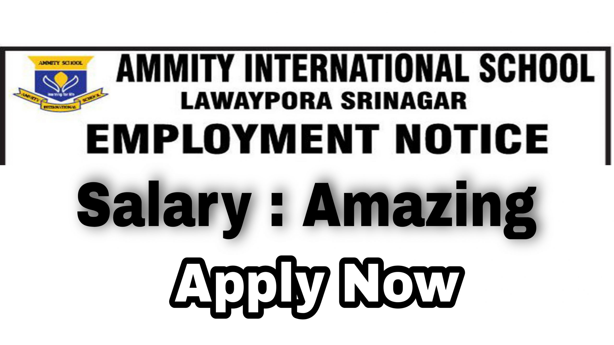amity international school lawaypora srinagar Jobs 2021