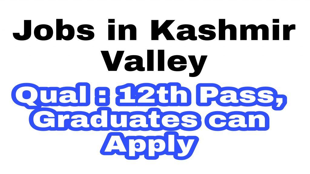 12th pass graduate jobs Kashmir
