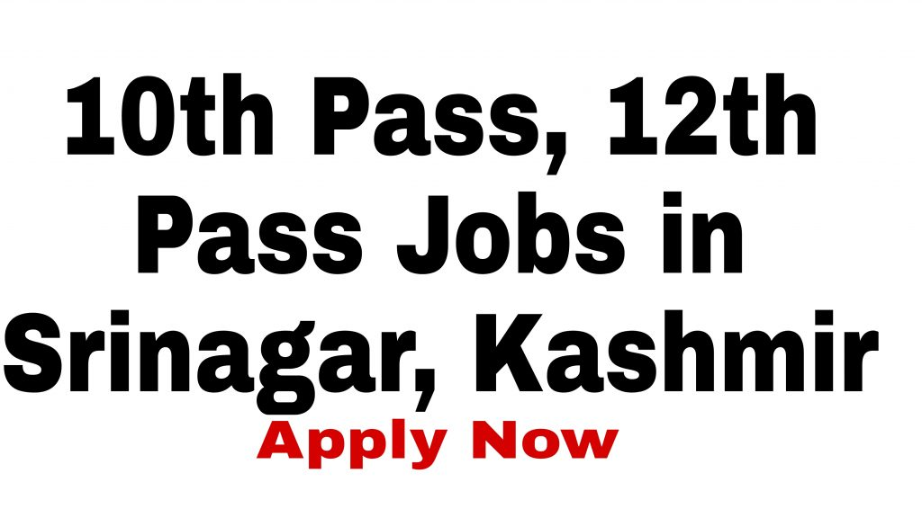 10th 12th pass job Kashmir Srinagar Nowgam Byepass