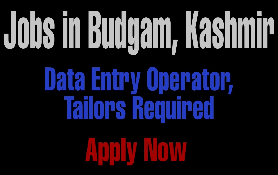 Jobs in Budgam Latest Update Hussainie Computer Institute district budgam Data entry operator
