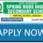 Jobs in Spring Buds Higher Secondary School Budgam: Apply Now