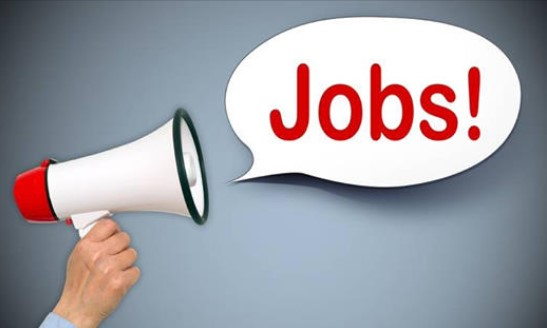New Jobs in Srinagar Salesmen Sales Executives & other Posts Available