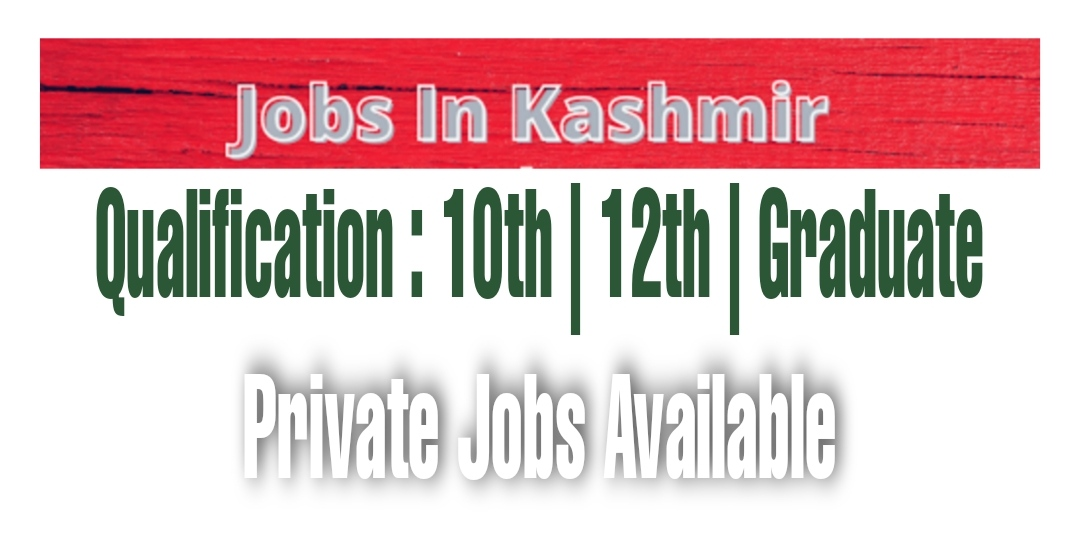 12th Pass Private Jobs in Srinagar Kashmir Graduate Data entry operator Sales executive