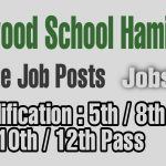 Private jobs in poonch Jammu Pinewood school hamirpur 10th pass 12th pass 8th