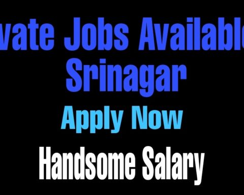 private jobs in srinagar 2021 Salary Sales Marketing
