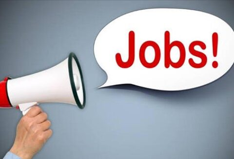 Delivery Boy Jobs in Kashmir Salary Upto 8000: Apply Now
