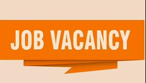 Staff Required for Automobile :Apply Now