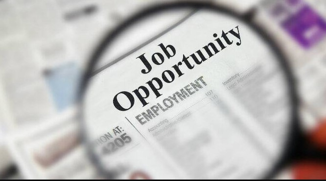 National Board of Examinations Jobs 42 Posts Available: Apply Now